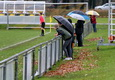 SG Dynamo Dresden U17 vs Hertha BSC U17 am 25.11.2017