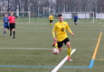 SG Dynamo Dresden U17 vs Hamburger SV U17 am 02.12.2017